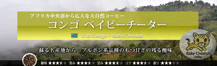 コンゴ ベイビーチーター - Congo Baby Cheetah