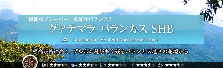 グァテマラ バランカス SHB - Guatemala SHB SanMarcos Barrancas
