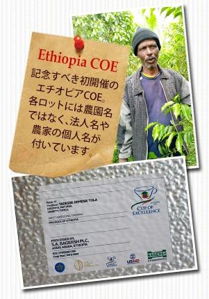 エチオピア COE2020 タデーレ デマイズ トーラーについて