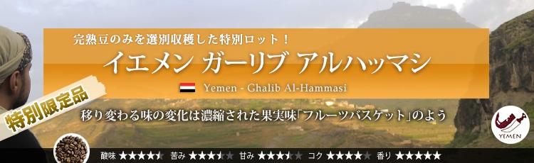 イエメン ガーリブ アルハッマシ - Yemen Ghalib Al-Hammasi
