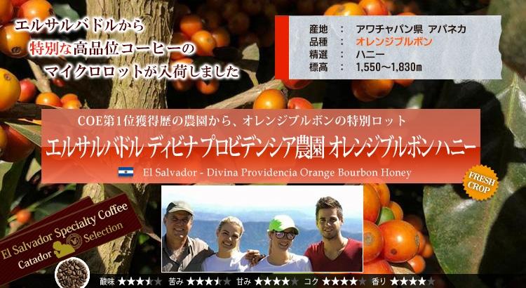 エルサルバドル ディビナ プロビデンシア農園 オレンジブルボン - El salvador Divina Providencia Orange Bourbon Honey