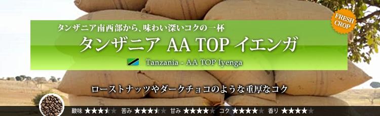 タンザニア AA TOP イエンガ - Tanzania AA TOP Iyenga