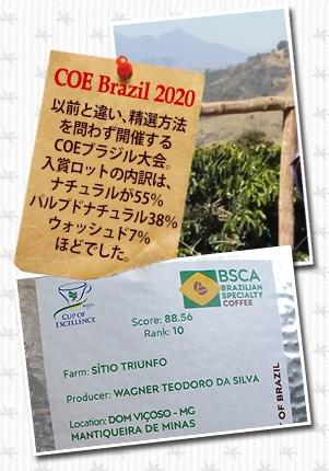 ブラジル COE2020 シティオ トゥリンフォについて