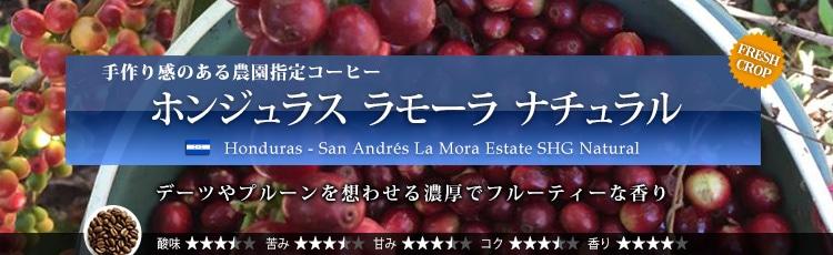 ホンジュラス ラモーラ ナチュラル - Honduras San Andres La Mora Estate SHG Natural