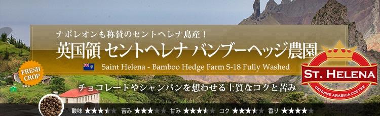 英国領 セントヘレナ バンブーヘッジ農園 - Saint Helena Bamboo Hedge Farm S-18 Fully Washed