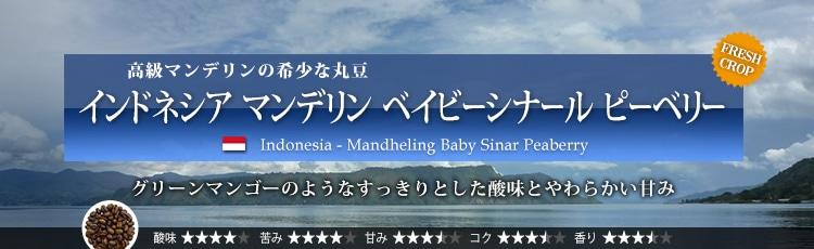 インドネシア マンデリン ベイビーシナール ピーベリー - Indonesia Mandheling Baby Sinar Peaberry
