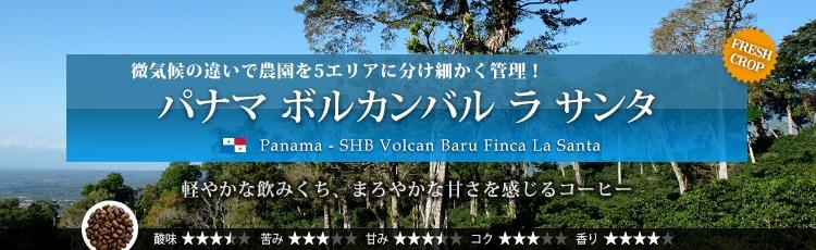 パナマ ボルカンバル ラ サンタ - Panama SHB Volcan Baru Finca La Santa