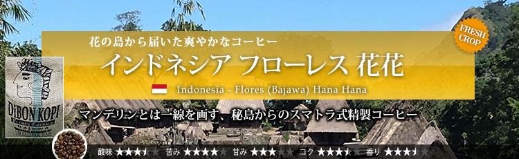 インドネシア フローレス 花花 - Indonesia Flores (Bajawa) Hana Hana