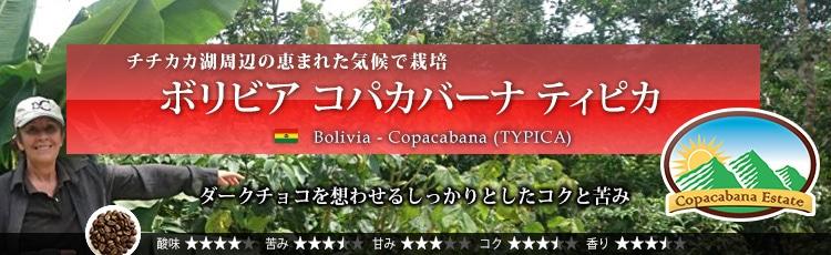 ボリビア コパカバーナ ティピカ - Bolivia Copacabana (TYPICA)
